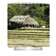 Thatched Shelter Shower Curtain