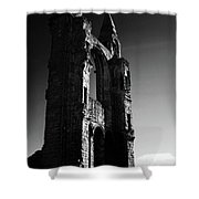 The Cathedral Wall Shower Curtain