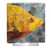 The Abyss Stares Back Shower Curtain