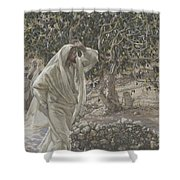The Accursed Fig Tree Shower Curtain by Tissot