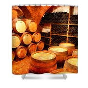 The Aging Room Shower Curtain