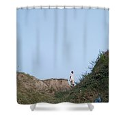 The Aimless Walking Shower Curtain