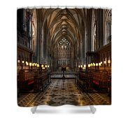 The Altar Shower Curtain by Adrian Evans