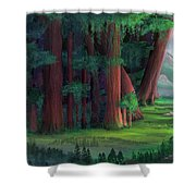 The Ancient Forest Shower Curtain