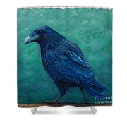 The Ancient One Shower Curtain by Brian  Commerford