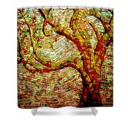 The Ancient Tree Of Wisdom Shower Curtain