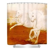 The Andalusians Shower Curtain