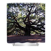 The Angel Oak In Charleston Sc Shower Curtain