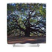 The Angel Oak In Spring Shower Curtain