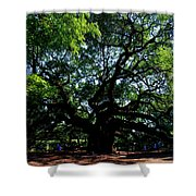 The Angel Oak In Summer Shower Curtain
