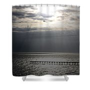 The Angel Speaks Shower Curtain