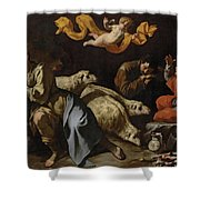The Annunciation To The Shepherds Shower Curtain