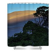 The Anthill Shower Curtain