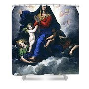 The Apparition Of The Virgin Shower Curtain