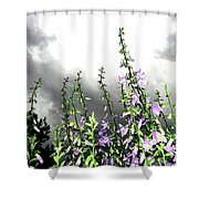 The Approaching Storm Shower Curtain