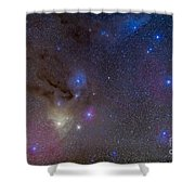 The Area Around The Head Of Scorpius Shower Curtain