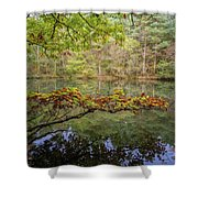 The Arsenic Lake Devon Great Consols Shower Curtain