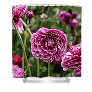 The Art Of Flowers Shower Curtain