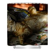 The  Art Of Relaxation Shower Curtain