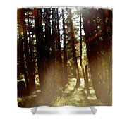 The Art Of The Forest Shower Curtain