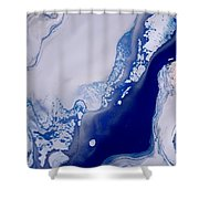 The Artic Shower Curtain