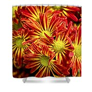 Chrysanthemum Bouquet Shower Curtain