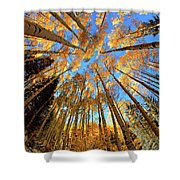 The Aspens Above - Colorful Colorado - Fall Shower Curtain