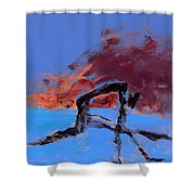 The Athlete Shower Curtain