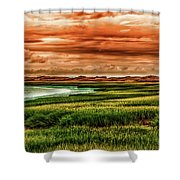 The Atlantic White Cedar Swamp Trail Shower Curtain
