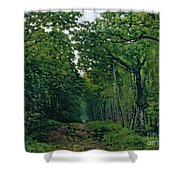 The Avenue Of Chestnut Trees Shower Curtain