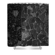 The B And W Wall Shower Curtain