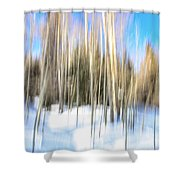 The Back Woods Shower Curtain