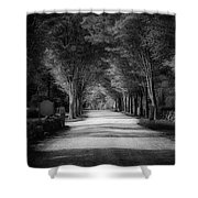 The Backroad Shower Curtain