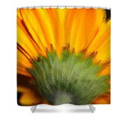 The Backside Shower Curtain