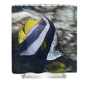 The Bannerfish Shower Curtain