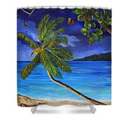 The Beach At Night Shower Curtain
