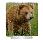 The Bear 1 Dry Brushed Shower Curtain