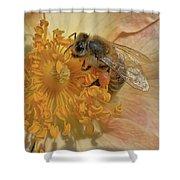 The Beautiful Bee Shower Curtain