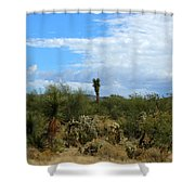 The Beautiful Desert I Love Shower Curtain
