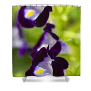 What's Wrong With Being A Pansy? Shower Curtain