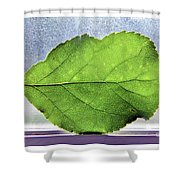 The Beauty Of A Leaf Shower Curtain