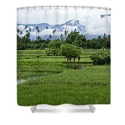 The Beauty Of Bali Shower Curtain