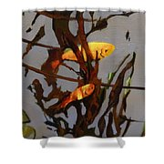 The Beauty Of Goldfish Shower Curtain