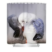 The Beauty Of Nature 00002 Shower Curtain