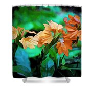The Beauty Of Nature Shower Curtain