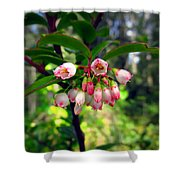 The Beauty Of Spring Shower Curtain