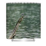 The Beauty Of The Nature Shower Curtain