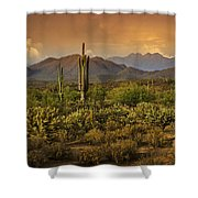 The Beauty Of The Sonoran Desert  Shower Curtain