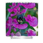 The Bee And The Flowers Shower Curtain