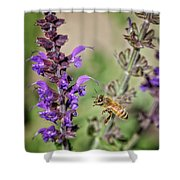 The Bee And The Laveder Shower Curtain